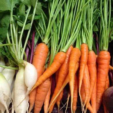 carrots as a plant based food